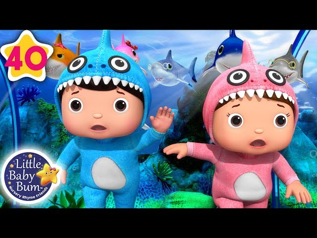 The Baby Shark Compilation | All Baby Shark Songs | Nursery Rhymes & Kids Songs | Little Baby Bum