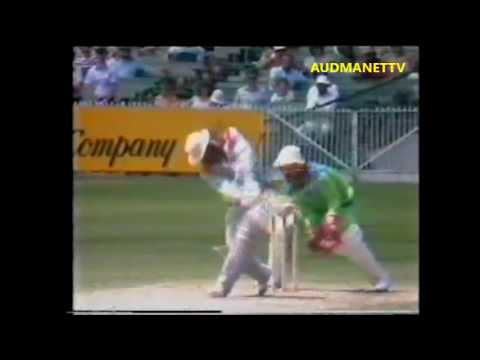 Gordon Greenidge and Desmond Haynes 182 runs Opening Partnership vs Pakistan