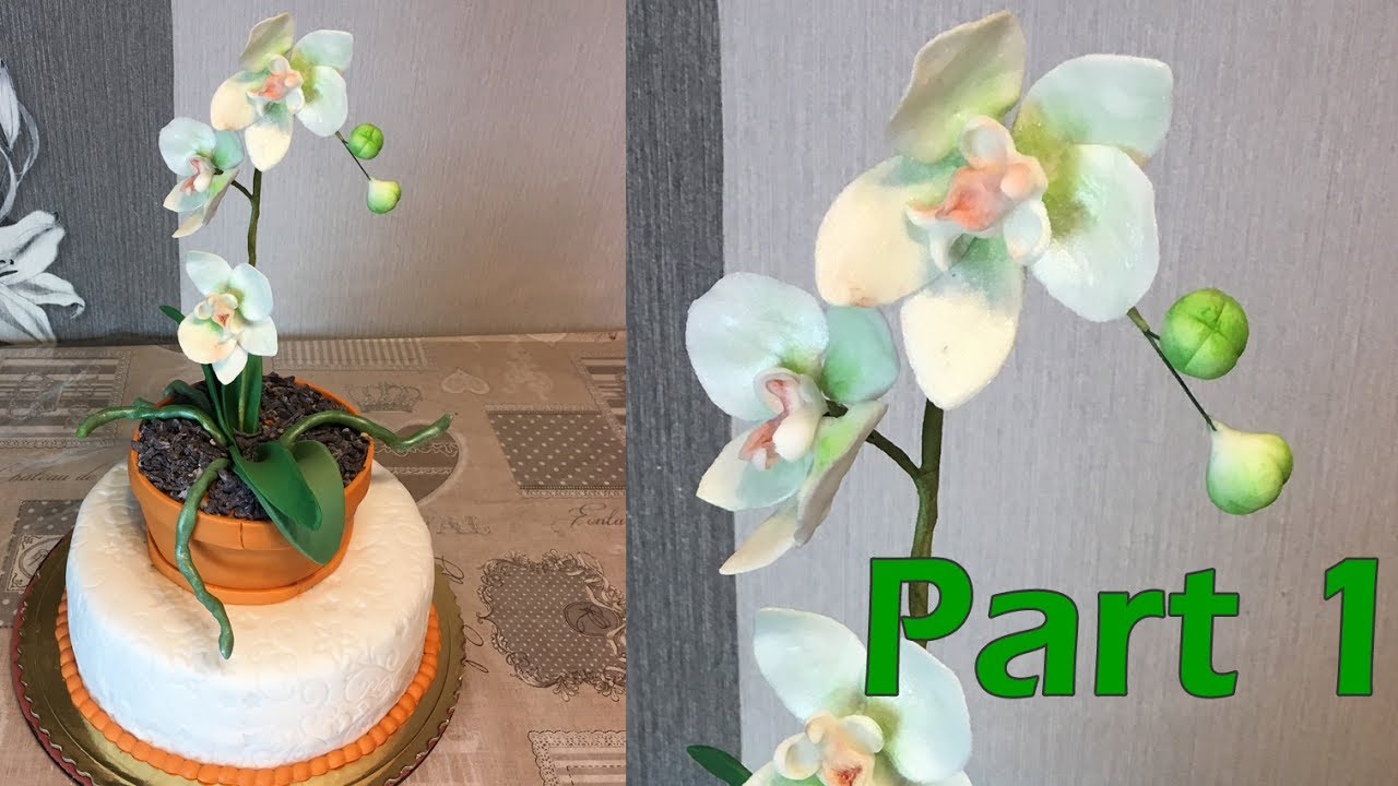 how to make an orchid cake