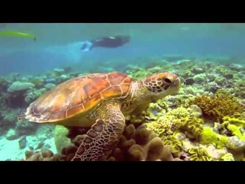 Thám hiểm lòng Đại dương