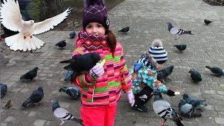 VLOG Гуляем на детской игровой площадке и кормим птиц