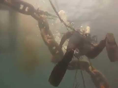 plongeur marocain pratiqué la deuxième profession la plus dangereux du monde 0635578608