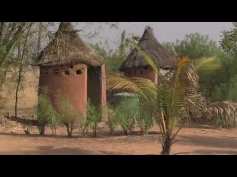 Vegan dinner in Burkina Faso + eco-friendly life in Africa!