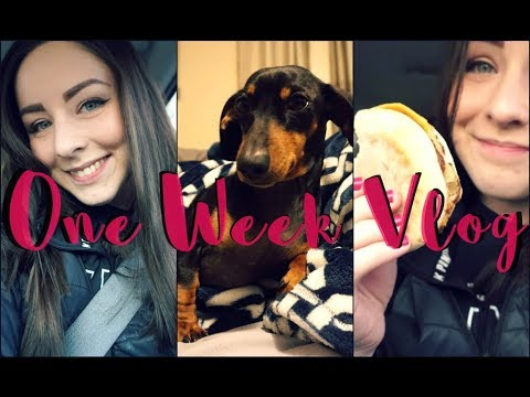 VLOG: A Week In My Average Life