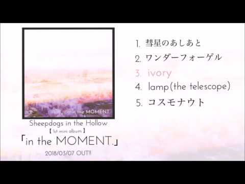 Sheepdogs in the Hollow -「in the MOMENT.」album teaser
