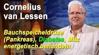 Bauchspeicheldrüse Pankreas Diabetes Milz energetisch behandeln | Cornelius van Lessen