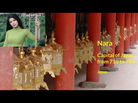 WHAT TO SEE IN Nara, capital of Japan from 710 to 794
