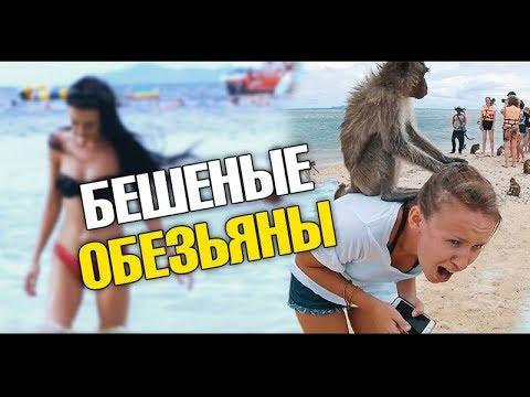 Остров (2006) смотреть онлайн бесплатно в хорошем качестве