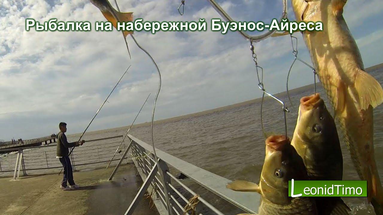 Аргентина. Рыбалка на набережной Буэнос-Айреса