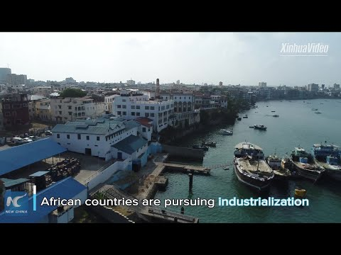 Chinese-built industrial parks FTZs help create jobs boost industrialization in Africa