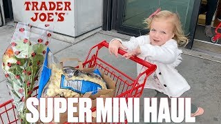 TRADER JOES ULTRA MINI GROCERY HAUL | ONE WEIRD THING YOU HAVE TO BUY!