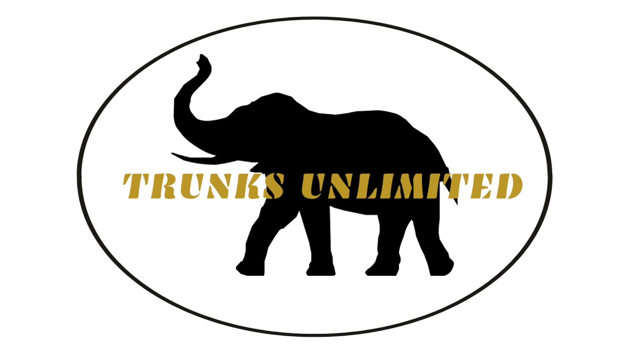 Trunks Unlimited - BMS Pitch Competition
