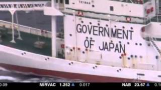 Activists trailing Japanese whaling fleet