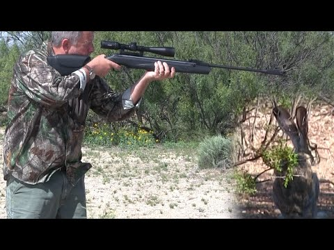German Spring Piston Airguns Are The Best!! Hunting Jackrabbit With The Walther Parrus