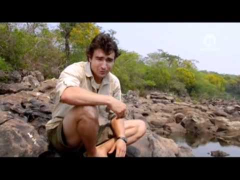 Eltűnt Amazóniában - Percy Fawcett ezredes rejtélye