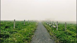 霧多布。あやめが丘の霧の世界