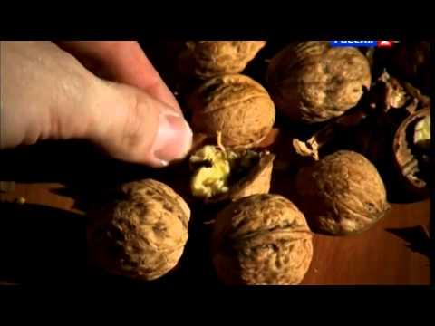 Грецкие орехи колет Денис Цыпленков