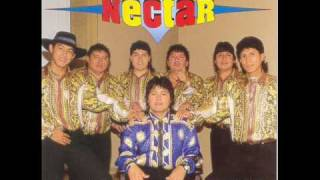 Grupo Nectar Matricidio Version Rolyto Dj 2009