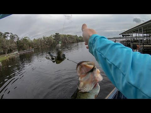 Bed Fishing For Stubborn Hard To Catch Bass ( Grassy Pond)