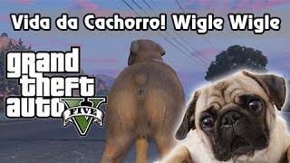 GTA V Nova Geração PS4: 01/27 Localização dos Peiotes! Vida de Cachorro, Wiggle Wiggle Wiggle