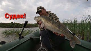 Судак Привет Рыбалка в Казахстане