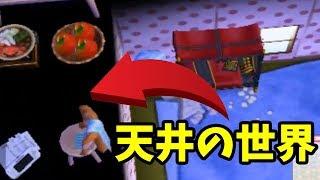 【とび森】家の天井裏に家具を置ける極秘の裏技がある?【とびだせ どうぶつの森 amiibo+ 実況プレイ】