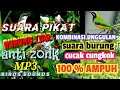 Suara Pikat Burung Liar Anti Zonk  Mp3 - Mp4 Download