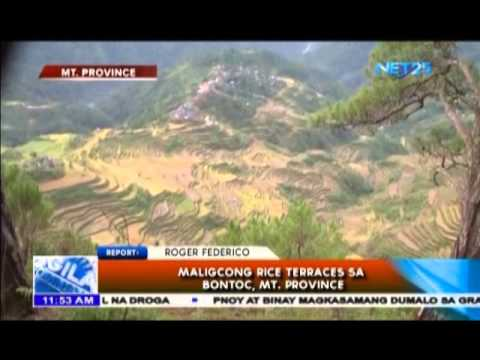 Maligcong Rice Terraces sa Bontoc, Mt  Province
