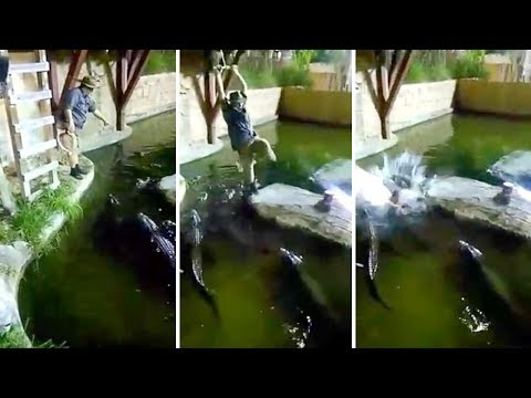 None - OMG! Orlando man falls in pool full of Alligators!