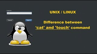 Difference between cat and touch | Linux | File and directory management