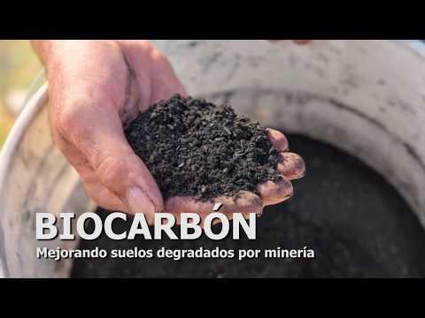 What is biochar?