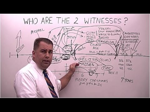 Who are the 2 Witnesses in Revelation chapter 11?