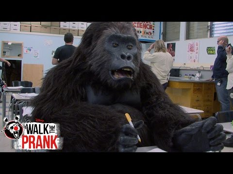 School Gorilla | Walk The Prank | Disney XD