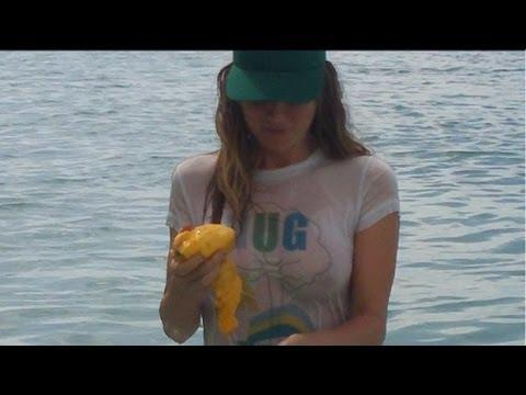 fruitarians eating mangoes freelee durianrider raw foodists sugar binge