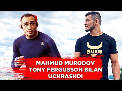 O'ZBEK MMA JANGCHISI TONY FERGUSSON BILAN UCHRASHDI / МАХМУД МУРАДОВ