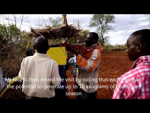 The Nguluni Beekeepers Self Help Group