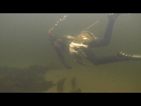 Охота на камбалу / Север / The hunt for flounder / North Рыбачий Патруль