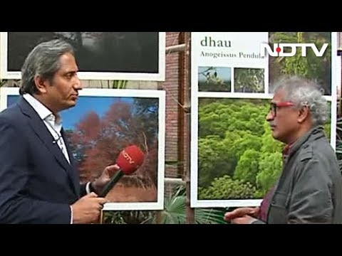 Prime Time With Ravish Kumar: Saving the Aravali Hills