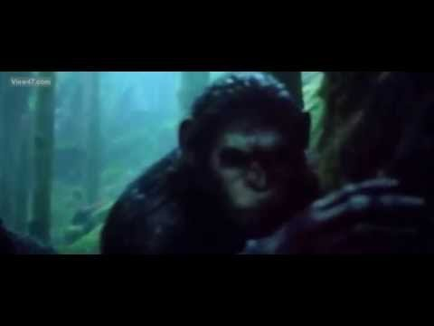 Dawn Of The Planet Of The Apes - Koba vs Bear/ Fight Scene. Better quality
