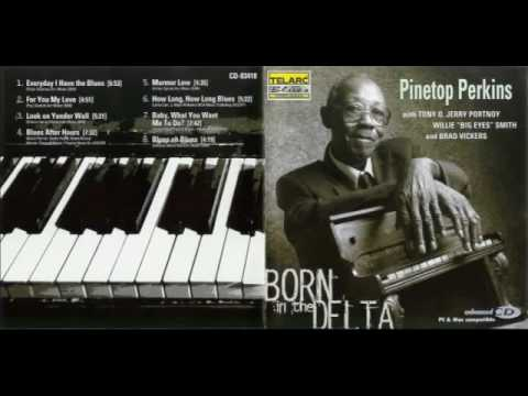 Pinetop Perkins - Born In The Delta (Full Album)