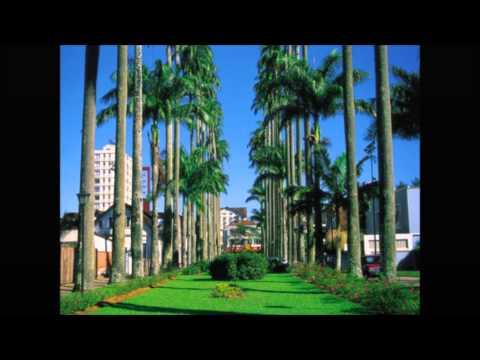 As 10 melhores cidades de Santa Catarina para se viver