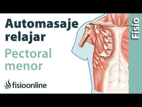 Lesión de hombro: Tendinitis del supraespinoso. ¿Qué es? Causas ...