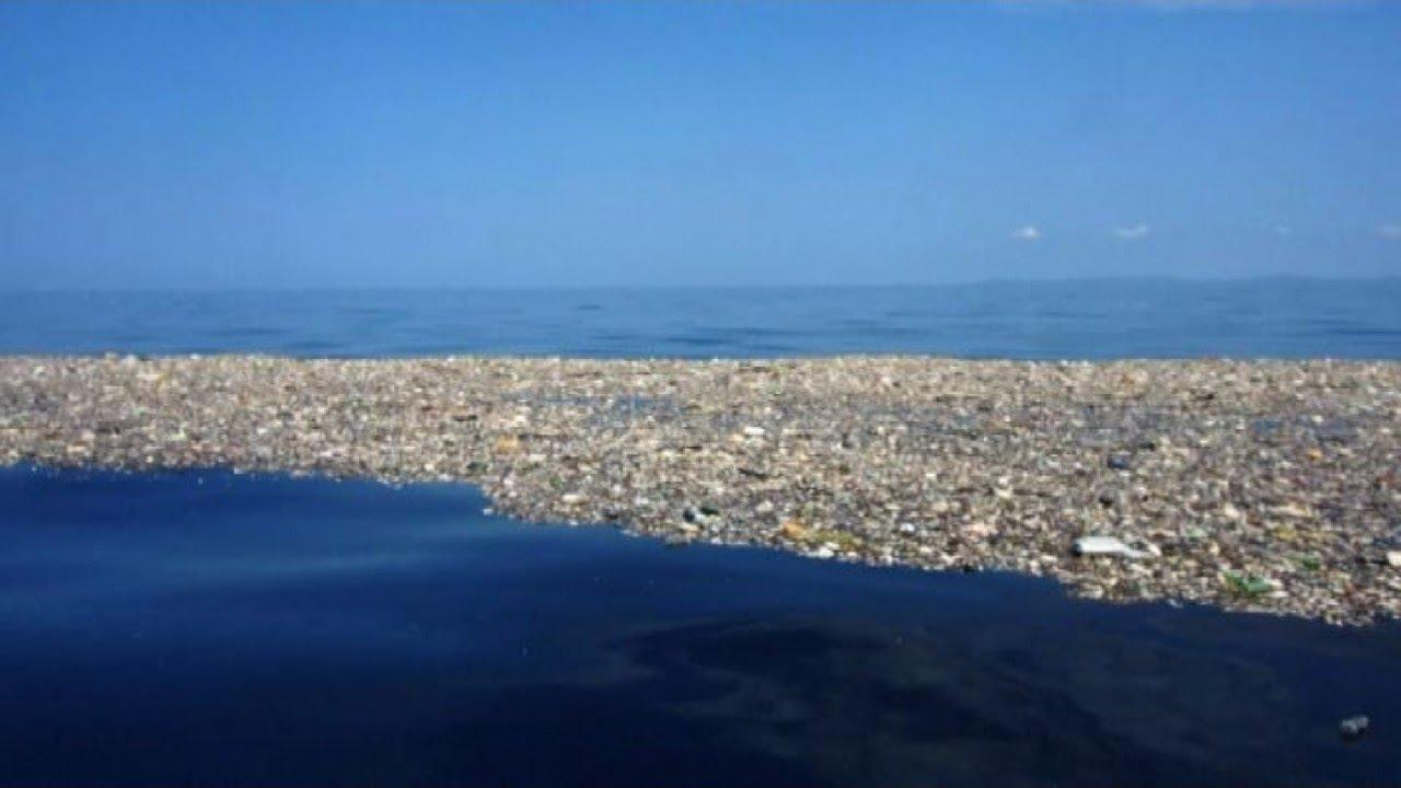 8e6f374820703b L isola dei rifiuti