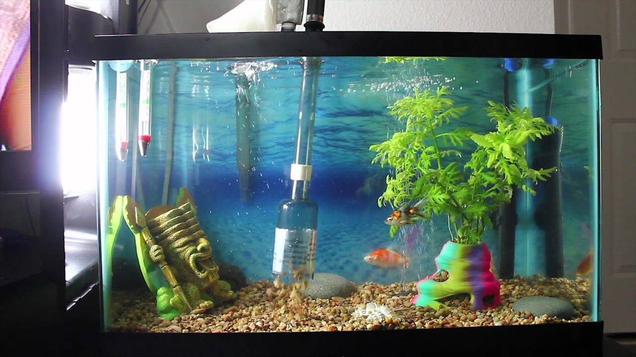 Aquarium fish tank battery vacuum syphon cleaner - Tom Mr Cleaner Battery Powered Gravel Vacuum Video Review