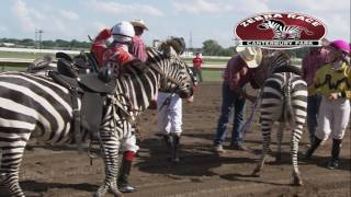 Canterbury Park Extreme Day 7-15-17