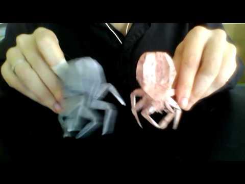Octopus Alien Space Ball Monster - YouTube | 360x480
