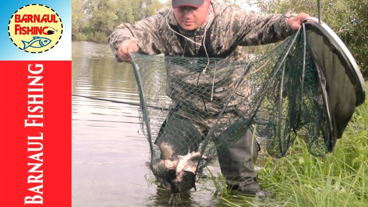 Рыбалка.КАРАСЬ УТАЩИЛ УДОЧКУ!!!(Barnaul Fishing)