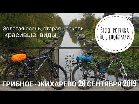 Велопрогулка по Ленобласти. Грибное - Жихарево (28.09.19)