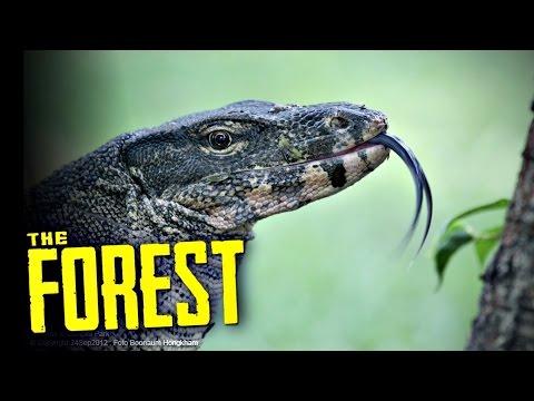 [The Forest #16] -  คนป่านักล่าตัวเห้!! Ft.OpzTv