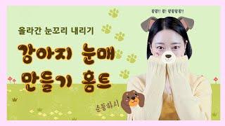 끌페홈 Ep.24 강아지 눈매 만들기 홈트